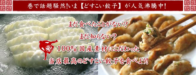 お取り寄せグルメ 餃子 ギョーザ 一番うまい餃子 日本一うまい餃子 流山名物