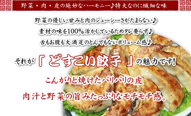 お取り寄せ餃子ランキング上位の美味しい餃子「どすこい餃子」冷凍でお届けします。冷凍餃子。国産素材100%。